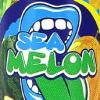 Flavor :  Sea Melon by Big Mouth